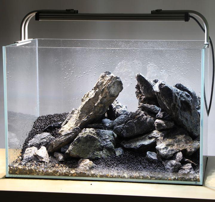 aquascaping mini landschaft
