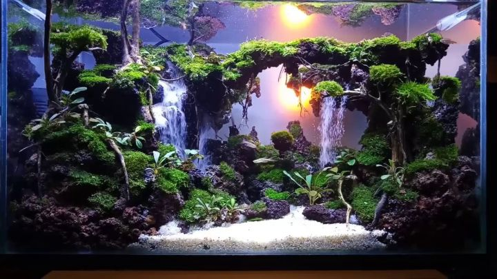 aquascaping waterfall