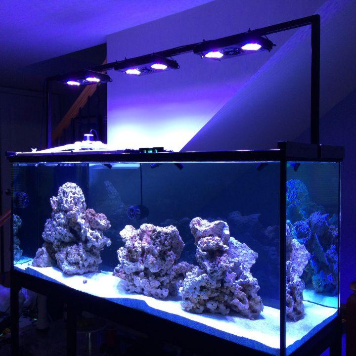 fish aquarium lights
