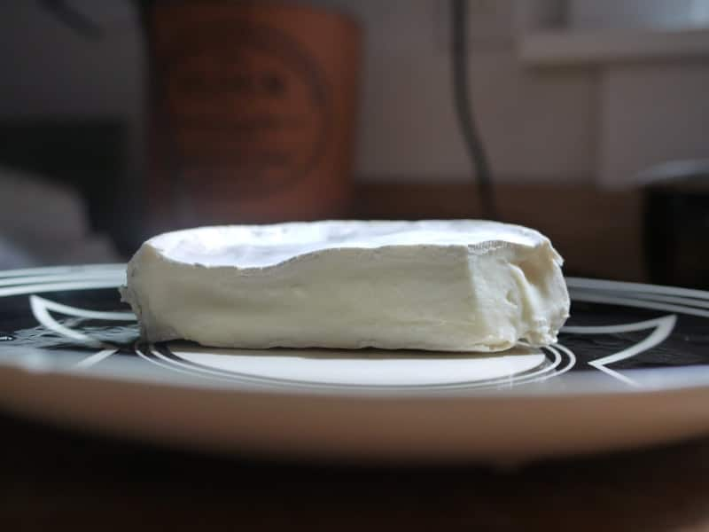 goat brie soft cheese