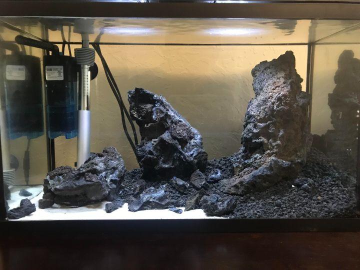 lava rock aquascaping