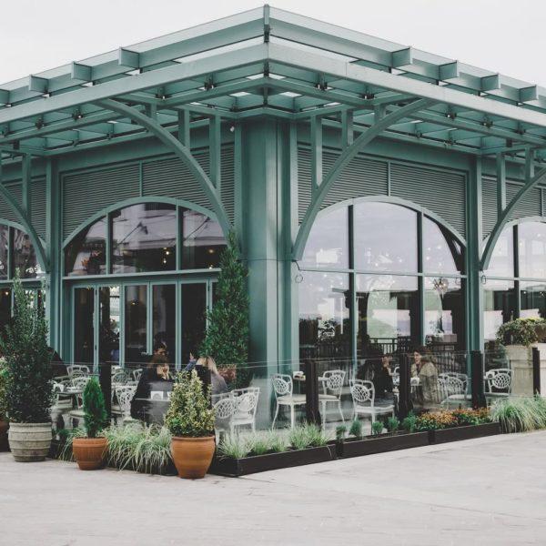 Garden Centers Stores for Your Gardening Supplies