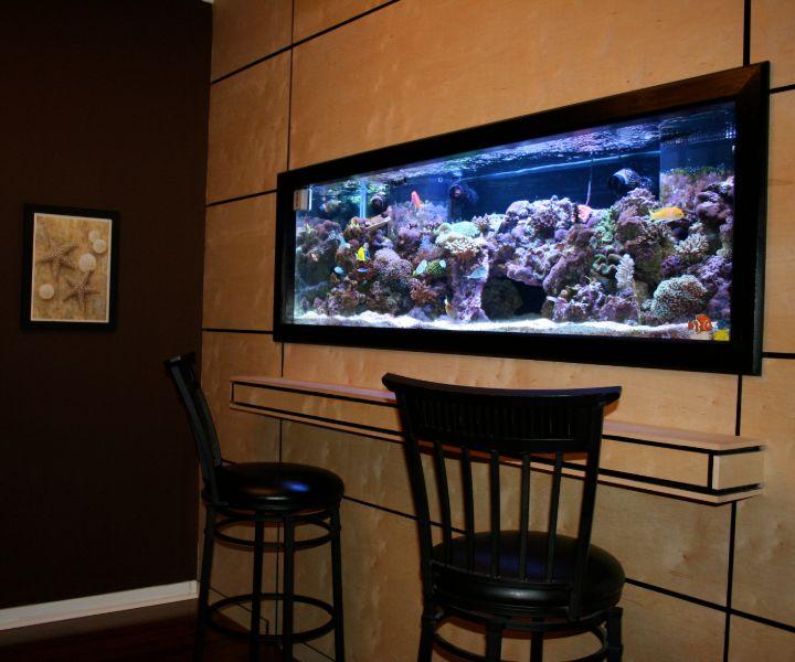 wall mounted fish aquarium