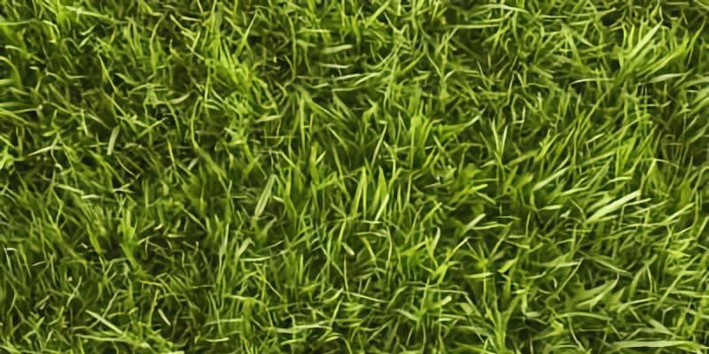 bentgrass type example