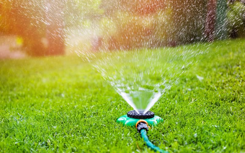 watering your grass type